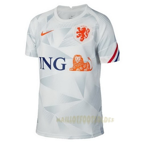 Pas Cher Maillot Foot Nike Pre Match Maillot Pays-Bas 2020 Gris
